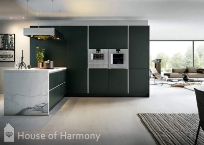 Next125 Kitchens at House of Harmony